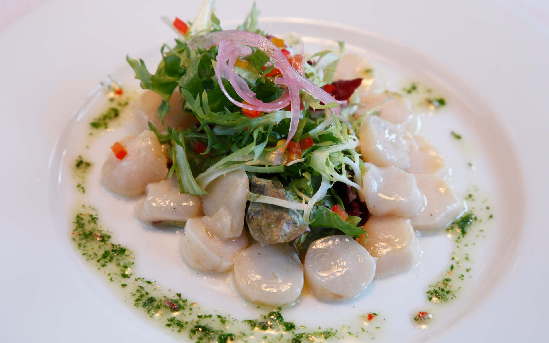 scallop salad norway