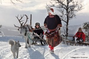 white reindeer sled husky Sami snow