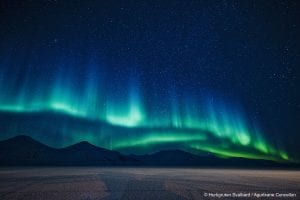 Green and blue northern lights show in starry winter night sky with mountain backdrop in Svalbard, Arctic Norway