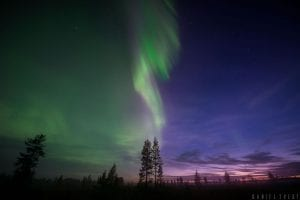 northern lights sky half green purple norway resort